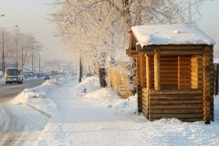 ostanovki-2020-01-12-16-17-05